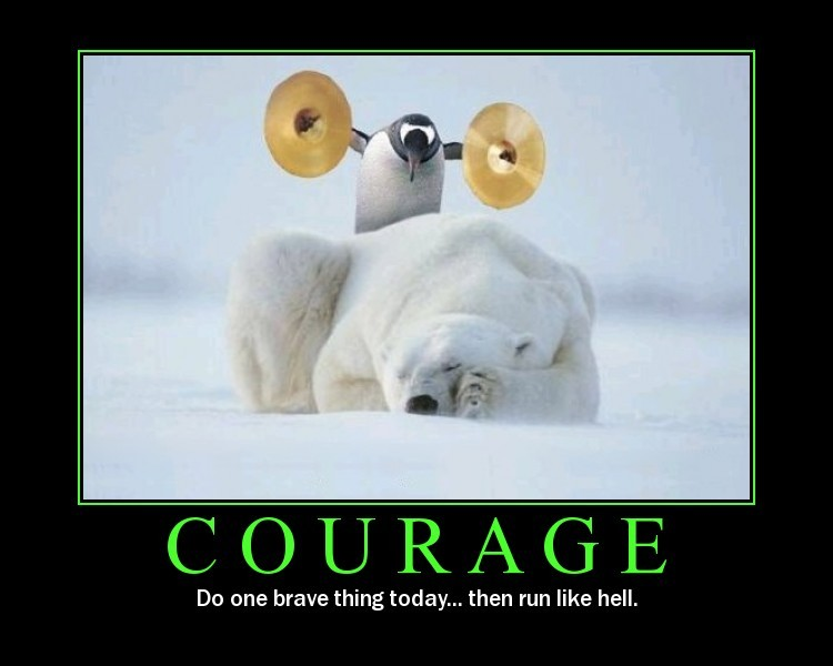 courage and patience win the race essay